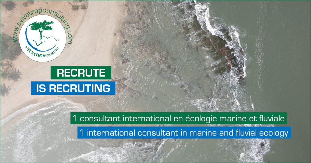 recrutement  consultant  u00e9cologie marine et fluviale